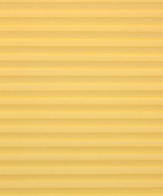 Plissee Rollo Gelb ~ Plissee und Rollo Onlineshop  Plissee transparent, Farbe gelb  nach